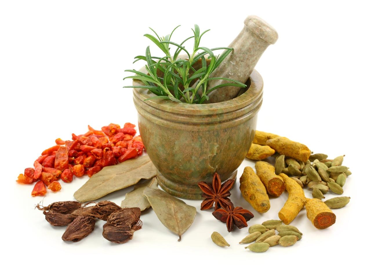 Народные средства при жировом гепатозе печени