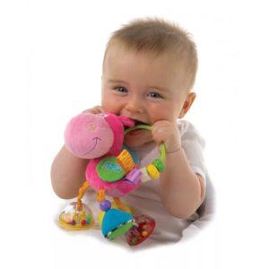 Ребёнок с погремушкой