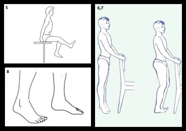 упражнения для коленных суставов по методике Евдокименко