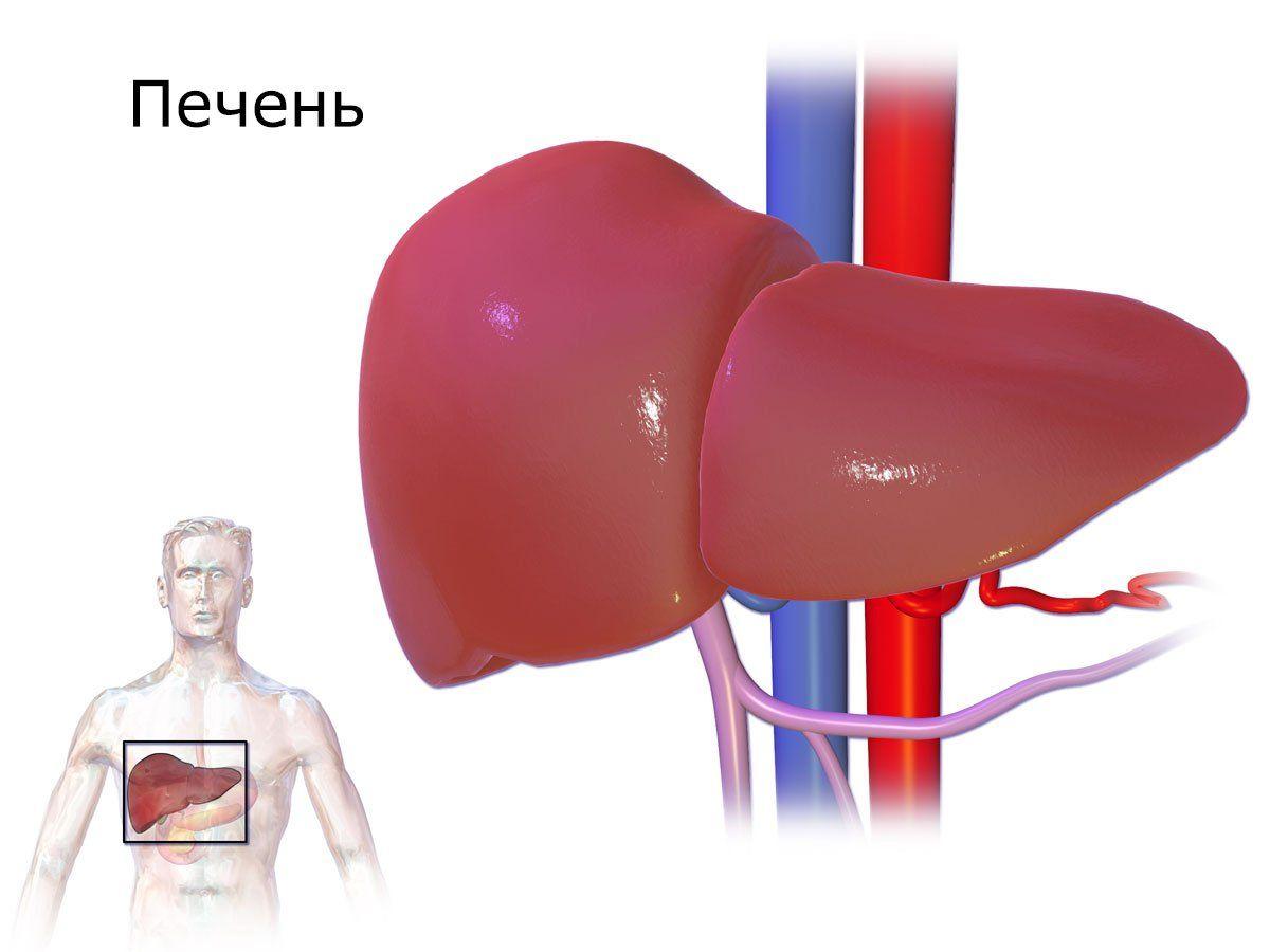 Осложнения вирусных гепатитов