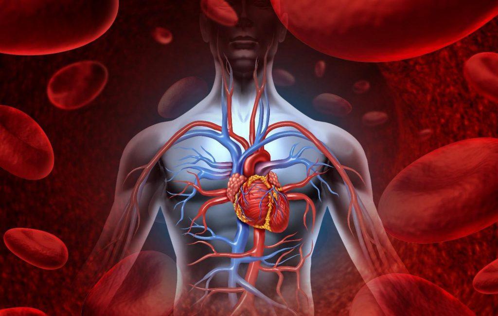 На начальных стадиях симптомы недостаточности сердца возникают только во время физических нагрузок