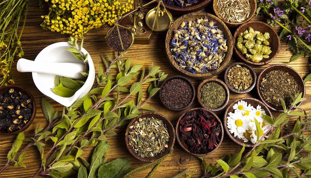 Народные методы лечения холестаза