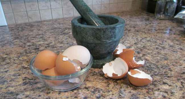 яичная скорлупа и ступка