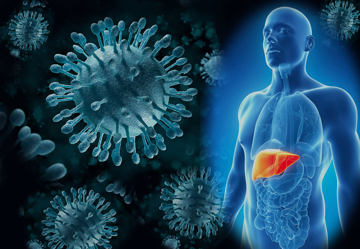 Сколько живут с гепатитом С