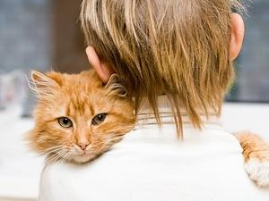 Заразиться лишаем можно от больного животного
