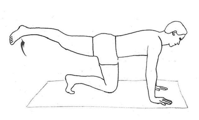 упражнение поднятие прямой ноги вверх из положения стоя на четвереньках