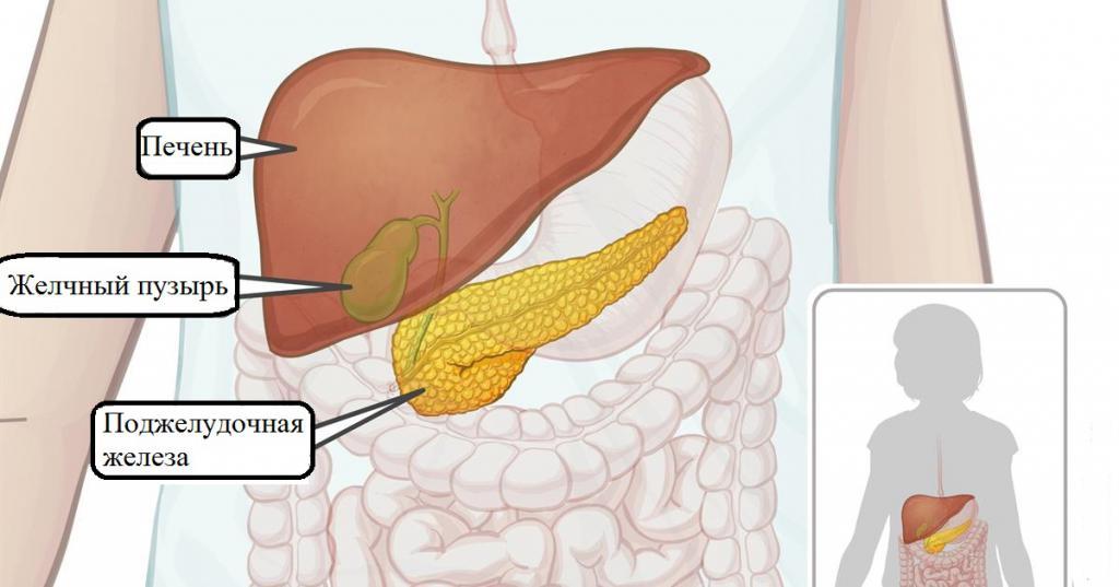 Поздние симптомы болезней печени и поджелудочной железы