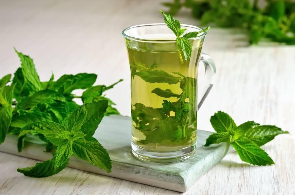 Какие травы пить для лечения гепатита С