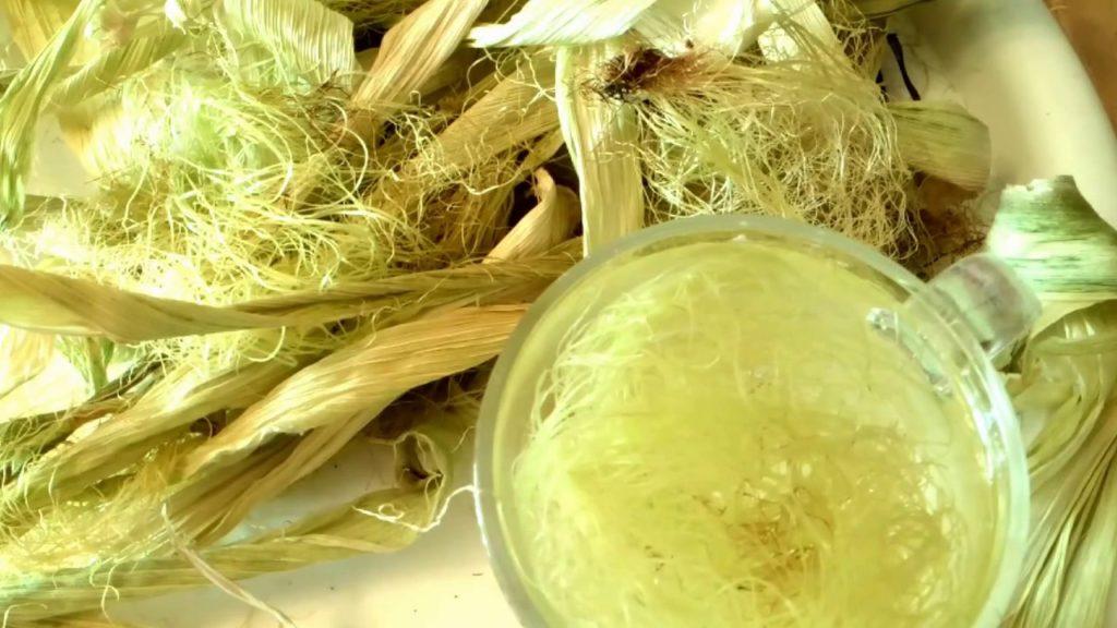 Настойка на кукурузных рыльцах
