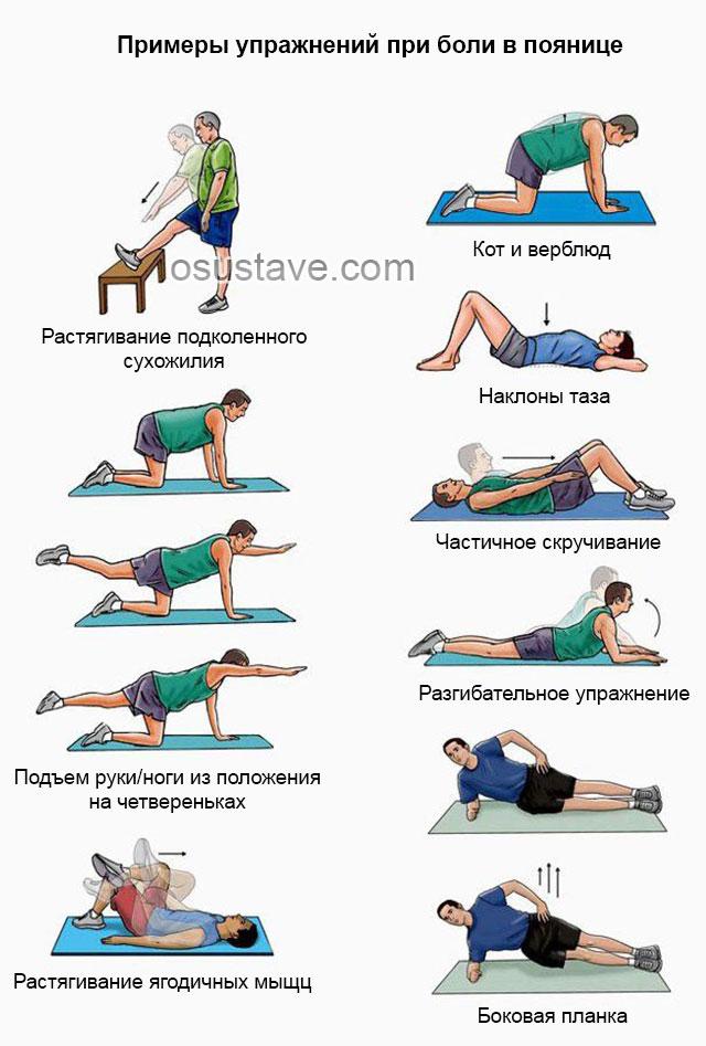 примеры упражнений при боли в пояснице