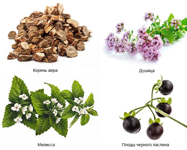 корень аира, душица, мелисса, плоды черного паслена