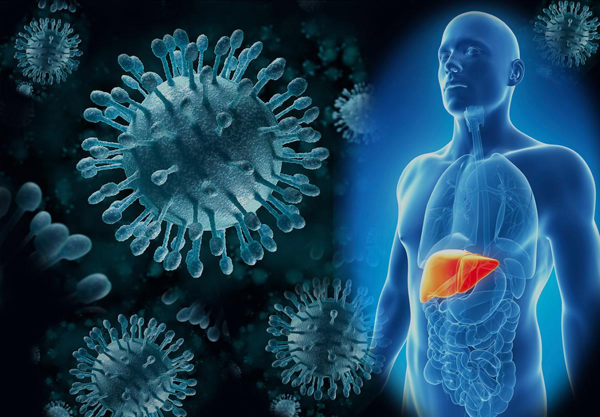 Гепатит С температура
