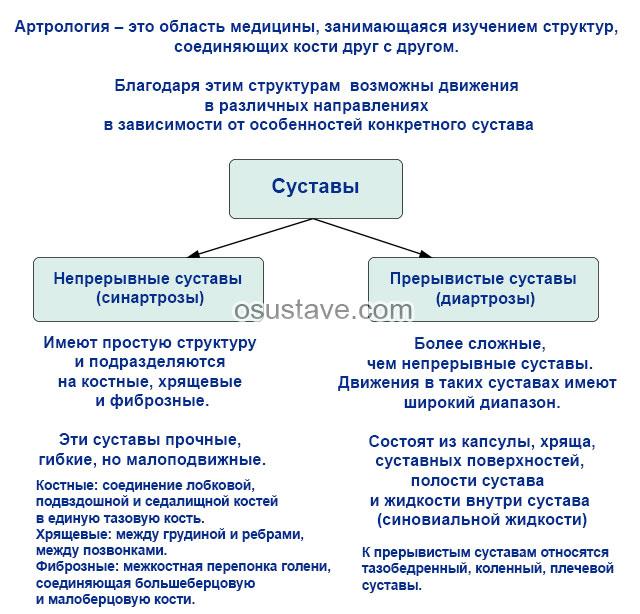 артрология
