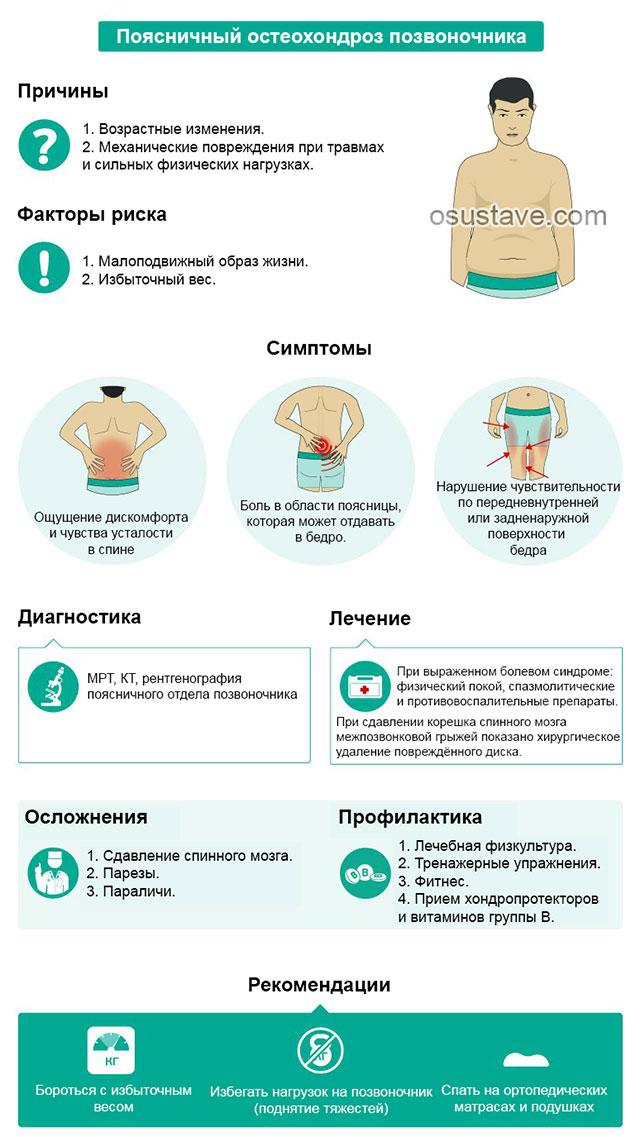 краткая инфографика про поясничный остеохондроз