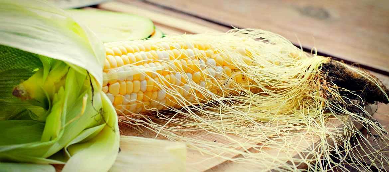 Народные рецепты с кукурузой от гепатита С