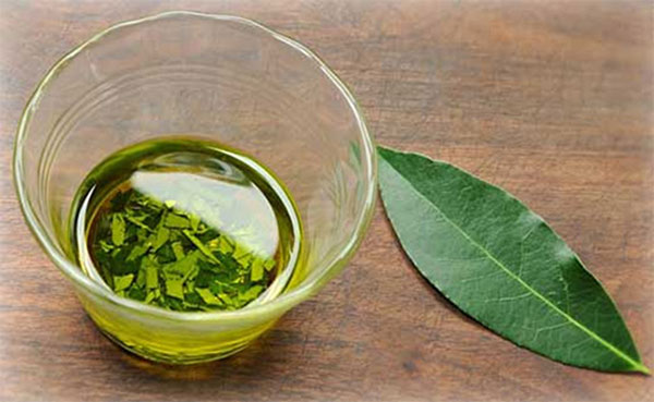 масло на лавровом листе
