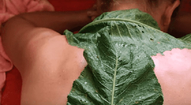 компресс из листьев хрена на шейный отдел